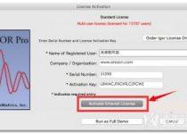 BitTorrent Pro Crack 7.11.4 Build 46067 With Activation Key 2021
